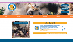 association alerte sos adoption animaux