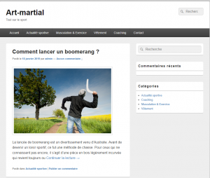 Art-Martial, duels de sports de combat